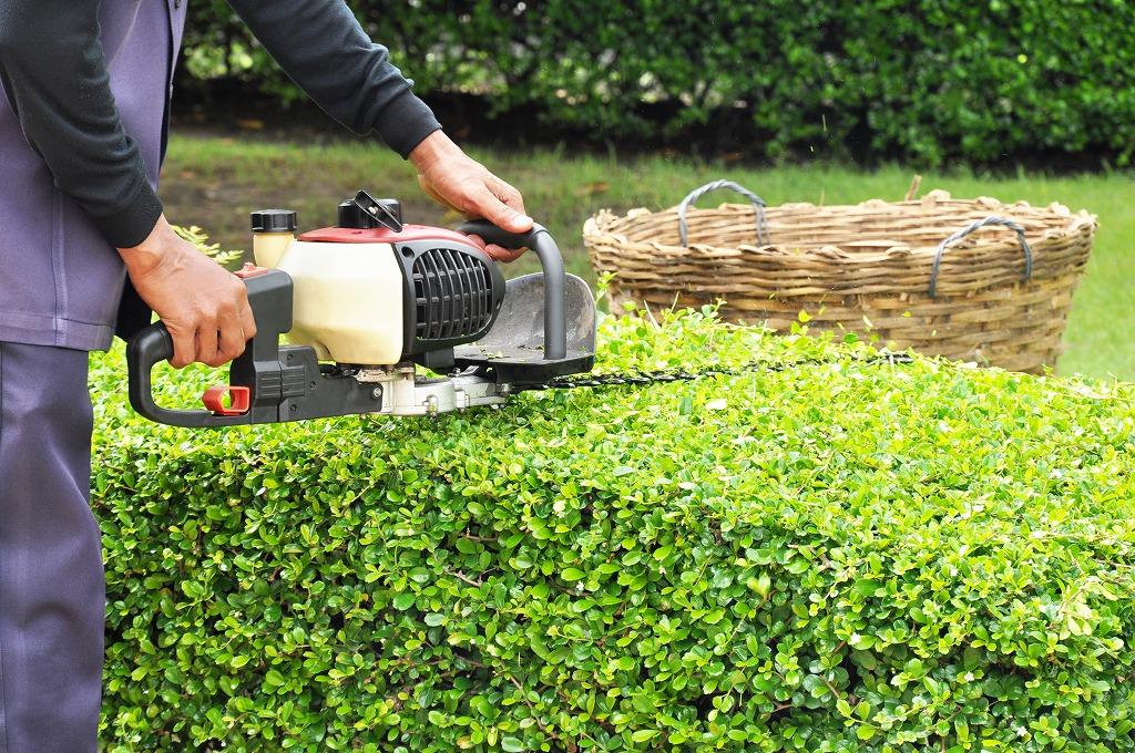 造園業でやりがいを感じる瞬間3選